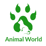 Animalworld.vn